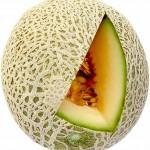 Netzmelone / Galliamelone